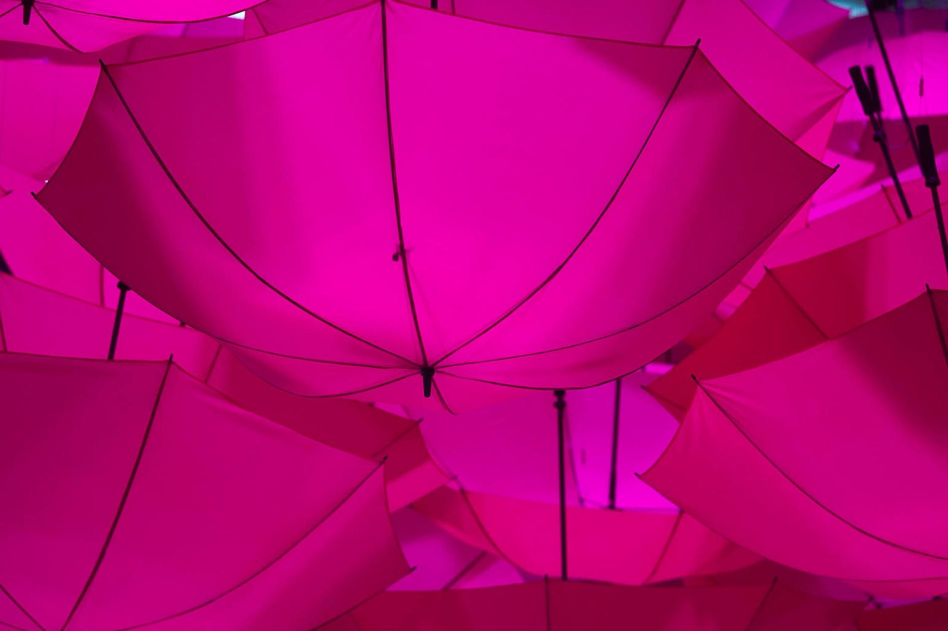 ppmediaaktuell28035140071.5450865default retinasignalfarbe magenta.jpg