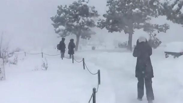 Schneesturm wütet über Grand Canyon