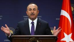 FDP warnt vor Türkei-Wahlkampf