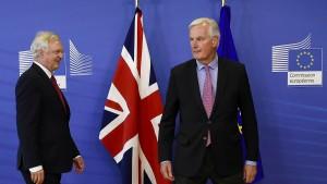 Welchen Brexit meinen die Briten?
