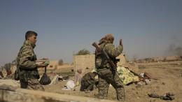 Hunderte IS-Kämpfer festgenommen