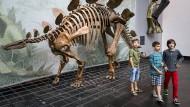 Knochen kosten Kohle: Das Senckenberg-Museum gehört nicht der Stadt, darum müssen auch Kinder Eintritt zahlen.