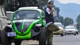 Käfer cool