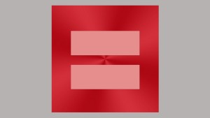 Facebook-Nutzer zeigen Flagge für Homo-Ehe