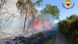 Waldbrand wütet auf Sardinien