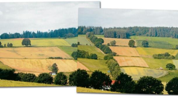 Bild / Kombo / Umkämpftes Terrain