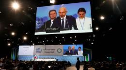 Durchbruch bei Klimakonferenz in Kattowitz