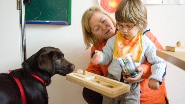 """Therapiehund """"Yasko"""" - wird vom Verein zur Förderung der Integration Behinderter (VZF)  zur Sprachförderung eingesetzt"""