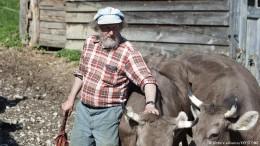 Kampf ums Kuhhorn in der Schweiz