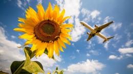Grüne wollen Inlandsflüge bis 2035 überflüssig machen