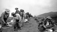 Vor der Vertreibung: Mexikanische Landarbeiter 1963 in den Vereinigten Staaten