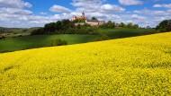 Anziehungspunkt: Die Ronneburg ist als Ausflugsziel in der Region bekannt. Das Sinntal jedoch weniger.