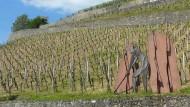 """Hier hätten die Wanderer wohl auch ohne Hubschrauber gefunden werden können: Der Erlebnispfad """"Wein und Stein"""" zwischen Heppenheim und Bensheim"""