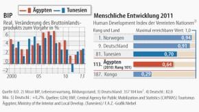 Infografik / BIP / Menschliche Entwicklung 2011