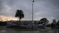"Trump ruft wegen ""Irma"" Katastrophenfall aus"