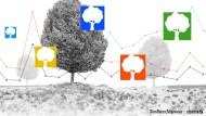 Startbild schneller schlau WALD 3