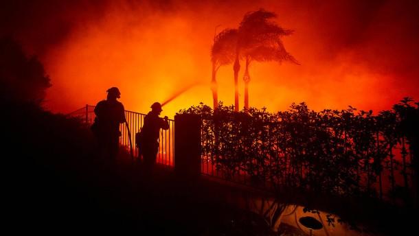 Zehntausende fliehen vor Waldbrand