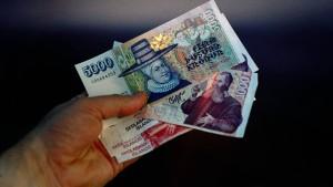 Landeswährung könnte an Euro gekoppelt werden