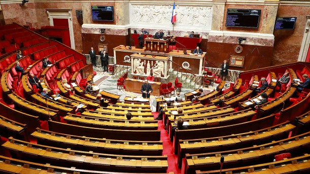 Parlamentarismus per Videokonferenz