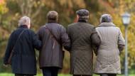 Vier Senioren gehen auf Mainau spazieren.