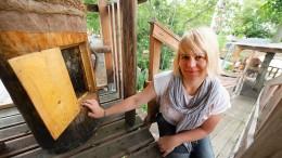 Baumhaus für Bienen