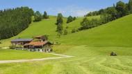 Bayerische Sparkassen bringen Bargeld nach Hause