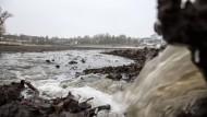 Ebbe und Flut: Der Große Woog gleicht derzeit einer Watt-Landschaft.