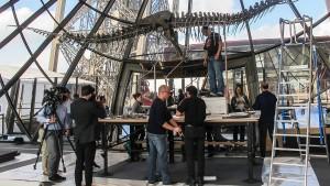Dino-Skelett für zwei Millionen Euro versteigert