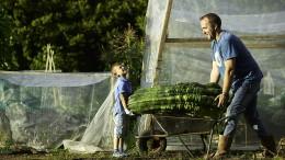 Rekordjagd im Gemüsebeet