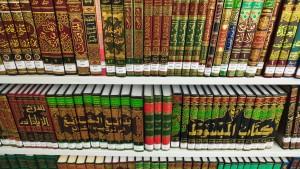 Den Koran besser verstehen