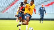 David Alaba und Serge Gnabry vom FC Bayern München kämpfen bei einer Trainigseinheit des Fußball-Bundesligisten in der Allianz Arena um den Ball.