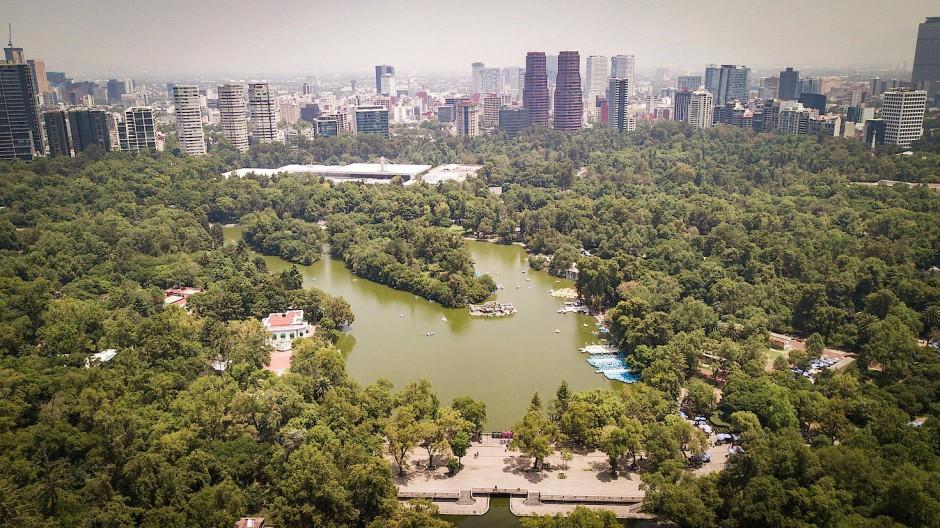 Was Hubert Fichte wohl über Mexiko-Stadt, diese verrückt schöne Stadt auf 2250 Meter, gedacht haben mag, wie sie auf ihn wirkte?
