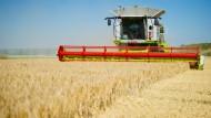 Getreideernte in Hessen.