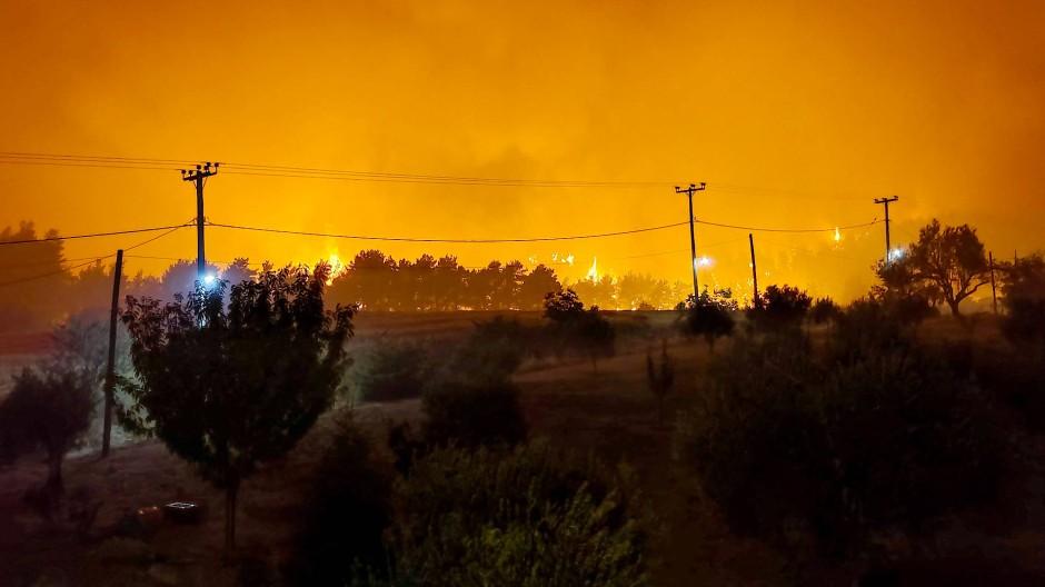 Gefahr nicht nur für die Bäume: Großbrand in Griechenland
