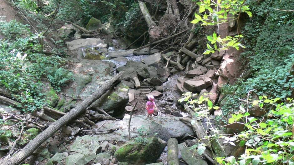 Sie gilt als steilste Talung im Odenwald, die Margaretenschlucht bei Neckargerach. Nur über seilgesicherte Wege ist der terrassenartig eingeschnittene Sandstein zu begehen.