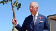 Prince Charles Looking at Things