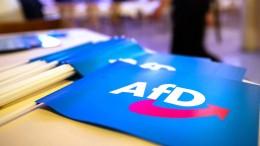 """AfD: """"Leider verfrüht veröffentlicht"""""""