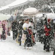 Vor einem Tempel in Kyoto versuchen die Menschen am Wochenende mit Regenschirmen gegen den heftigen Schnellfall anzukämpfen.