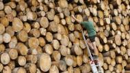 Wie kommt das Holz in den Kamin?