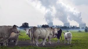 Was uns die Energiewende wirklich kosten wird
