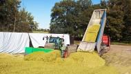Als die Welt scheinbar noch in Ordnung war: Maisernte der KTG Agrar