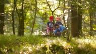 Wem der Ausflug in den Freizeitpark zu kostspielig ist, der kann mit den Kindern ins Naherholungsgebiet namens Wald fahren (Archivbild).