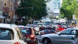 Bürgerinitiative: Keines der Mainufer für Autos sperren