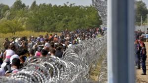 Drücken die Flüchtlinge unsere Löhne?