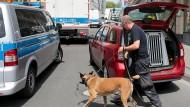 Ein Polizist mit Sprengstoffspürhund macht sich am Donnerstag auf den Weg zur Wohnung eines mutmaßlichen Gefährders.