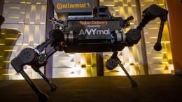 Von Robotaxis und tanzenden Robotern