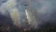 Ein Hubschrauber wirft über der Insel Sardinien Wasser ab, um die Feuer zu löschen.