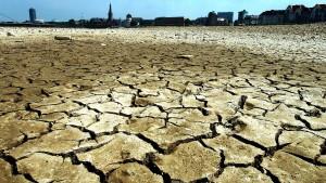 """""""Es gibt im Moment keinen Klimaschutz"""""""