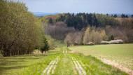 """""""Grenzen trennen, Natur verbindet"""": Der ehemalige Kolonnenweg bei Eisfeld in Thüringen wurde unter Naturschutz gestellt."""