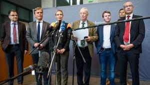 AfD-Politiker streiten um Krim-Reise